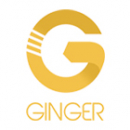 Ginger Marketing Services P. Ltd